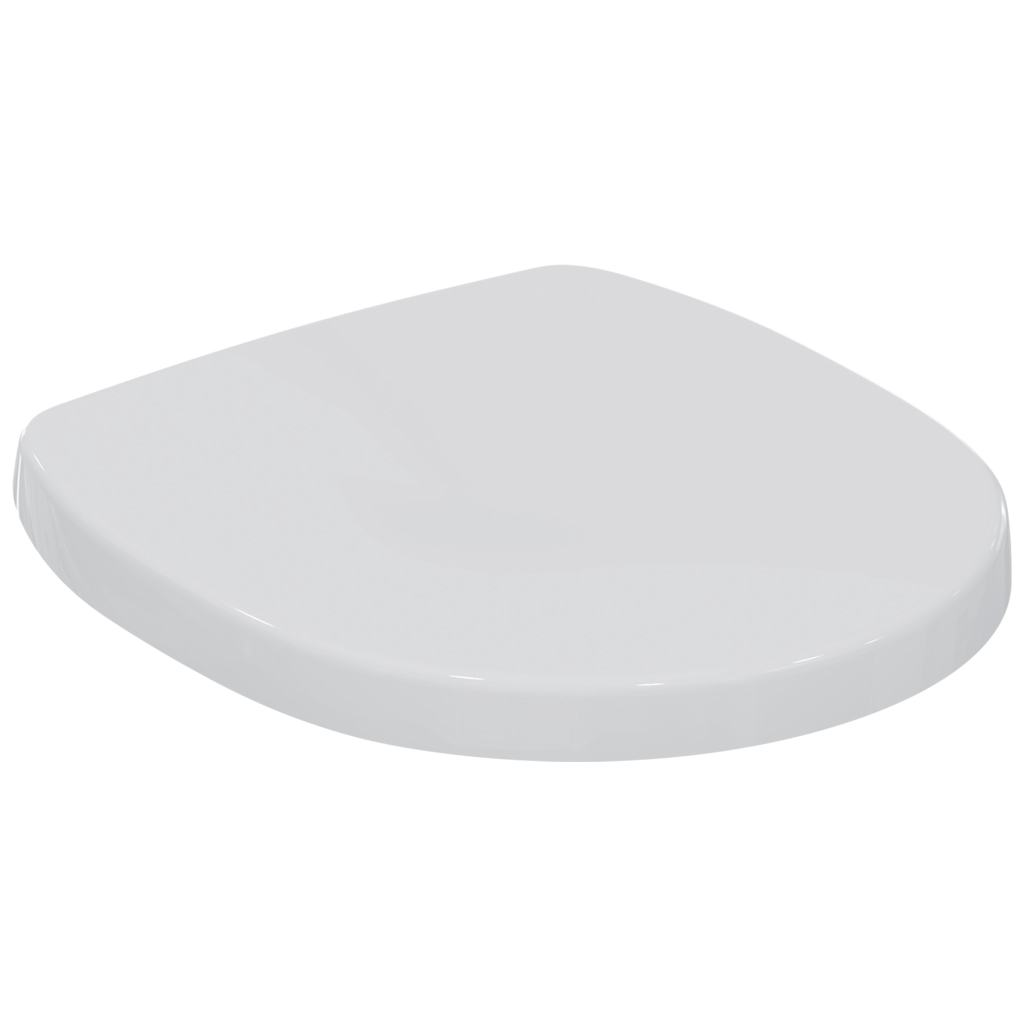 Toilet Seat and Cover
