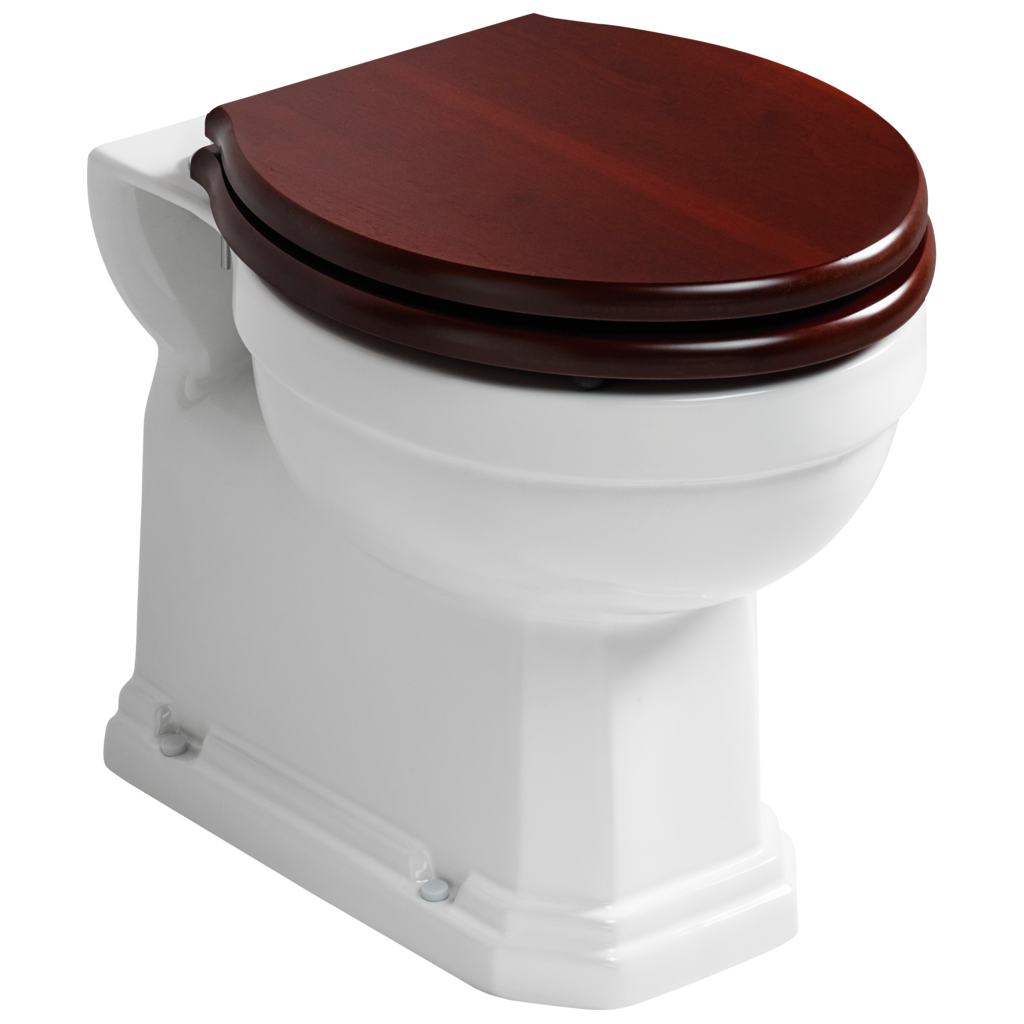 Back To Wall WC Bowl