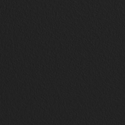 Noir intense (FV) (Référence produit :K8227FV)