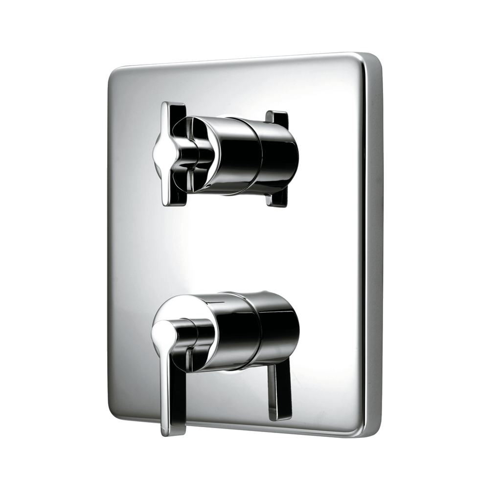 Faceplate and Handles for TT Valve