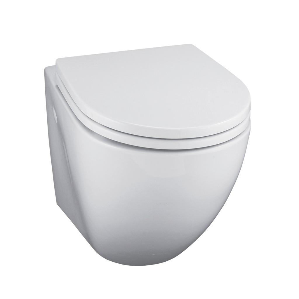 Wall Mounted WC Bowl