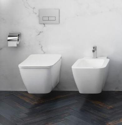 Vaso Bidet Combinato Ideal Standard.Water Wc Ideal Standard